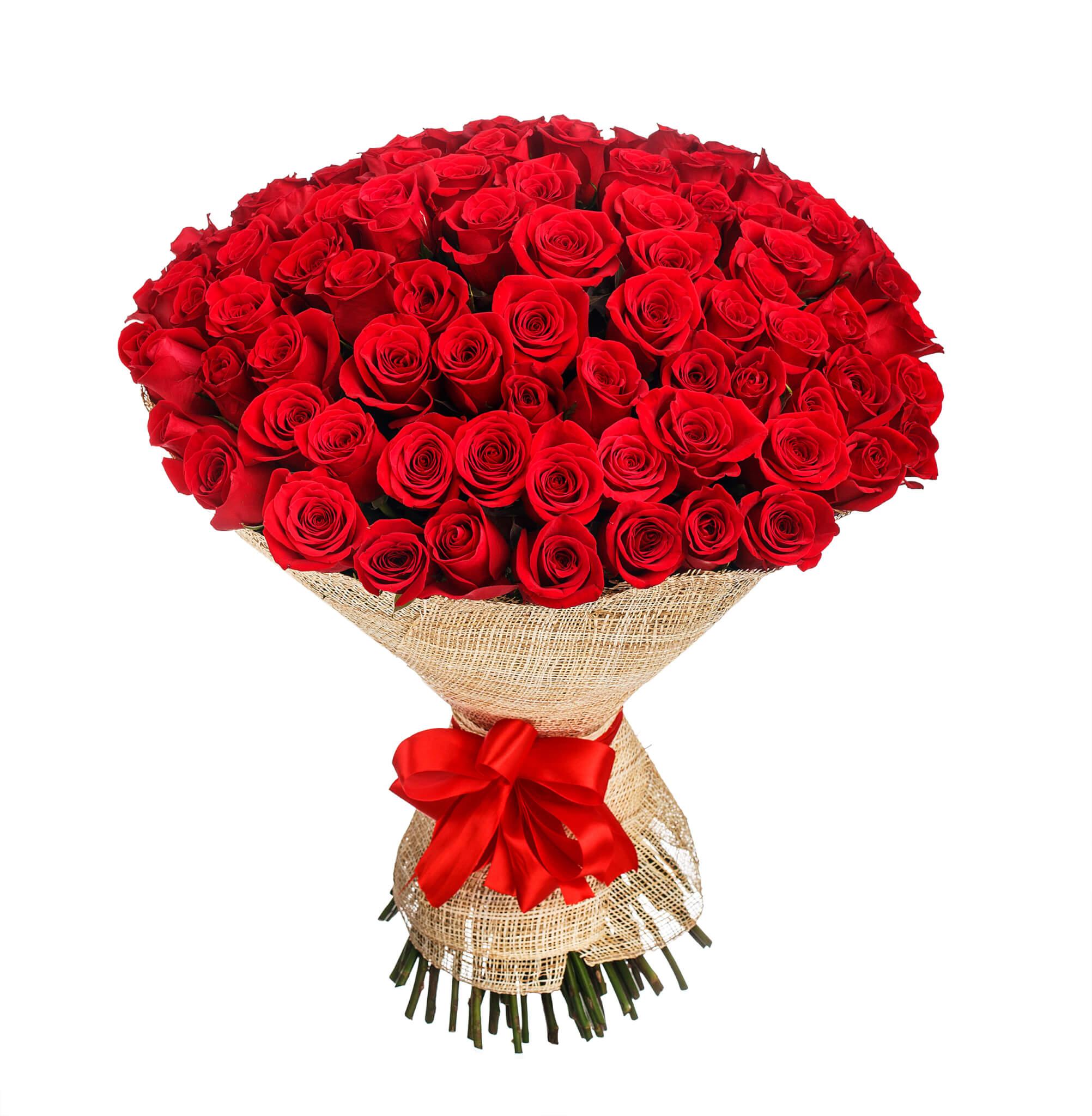 100 rote Rosen