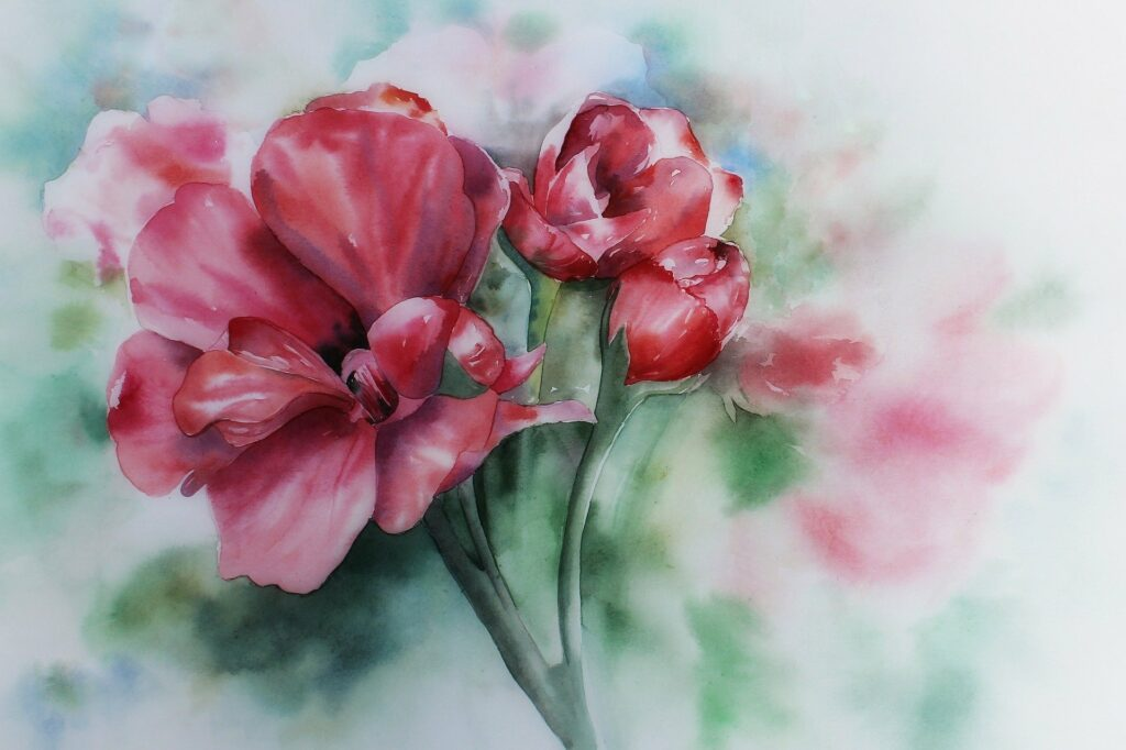 Aquarell Bild einer Geranienblüte
