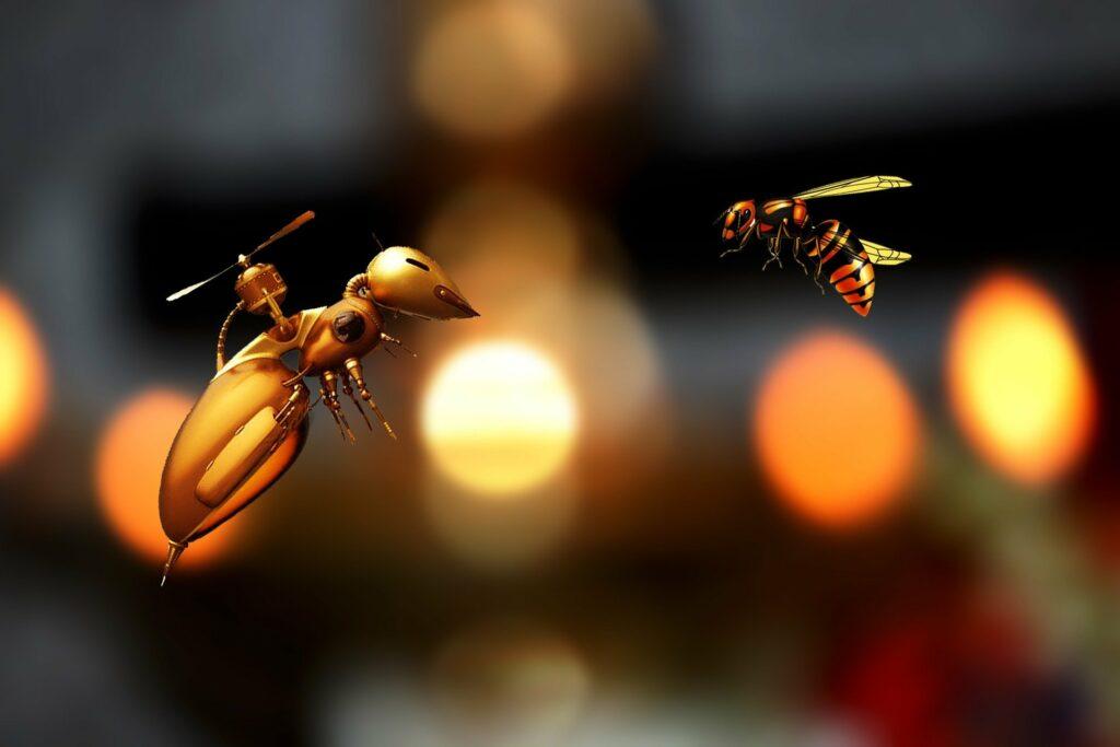 Biene und Drohne