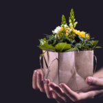 Blumen Im Karton Verschenken