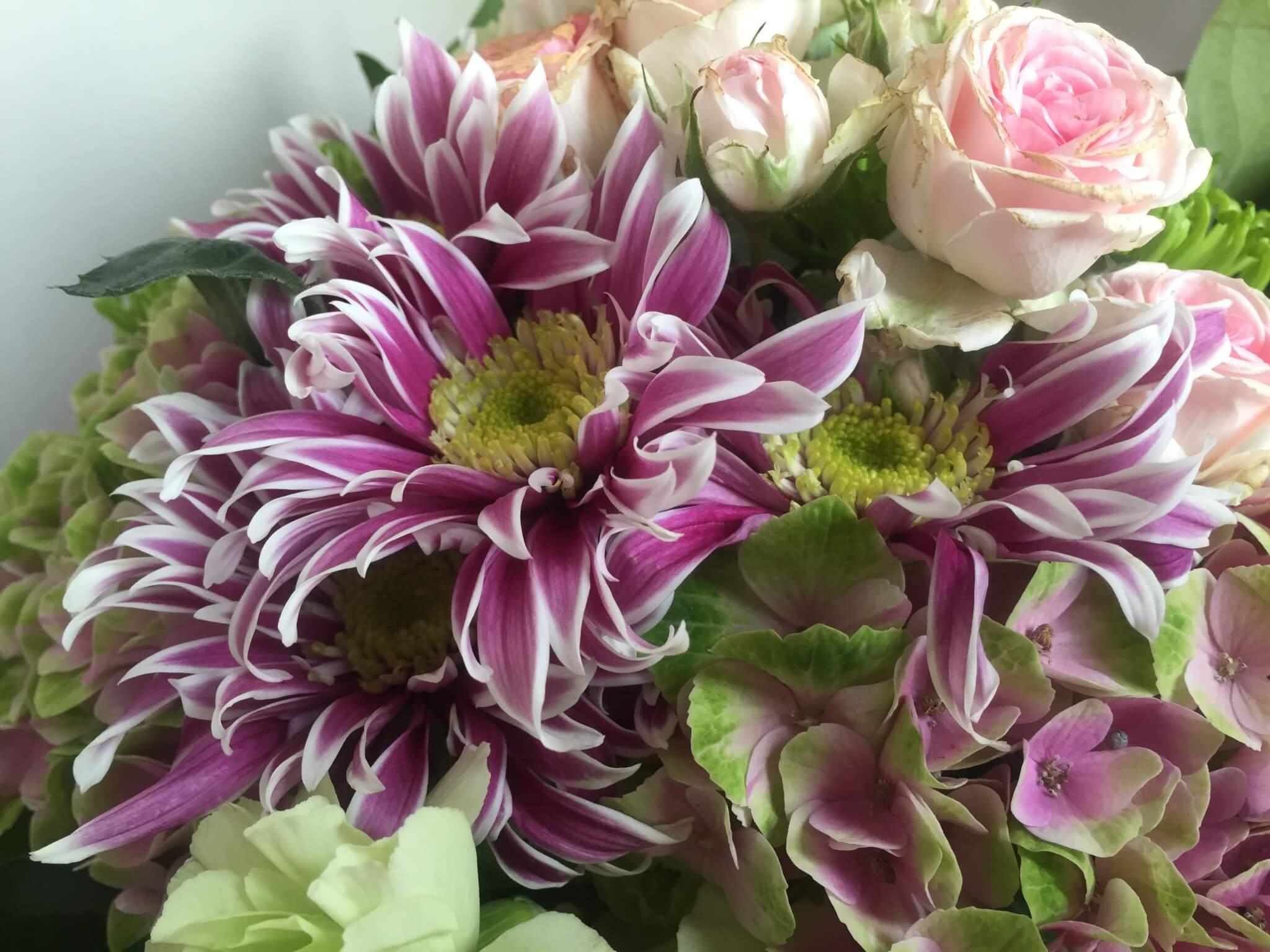 Blumenstrauss Chrysanthemen
