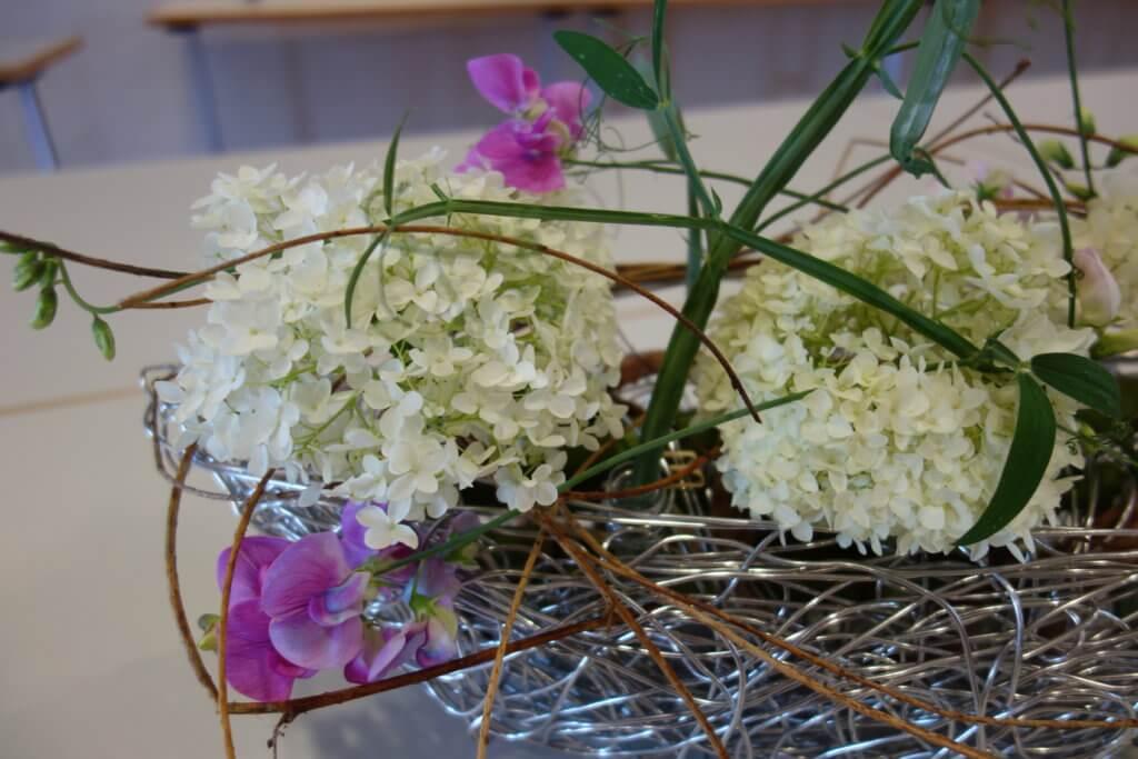 Hortensien Nest