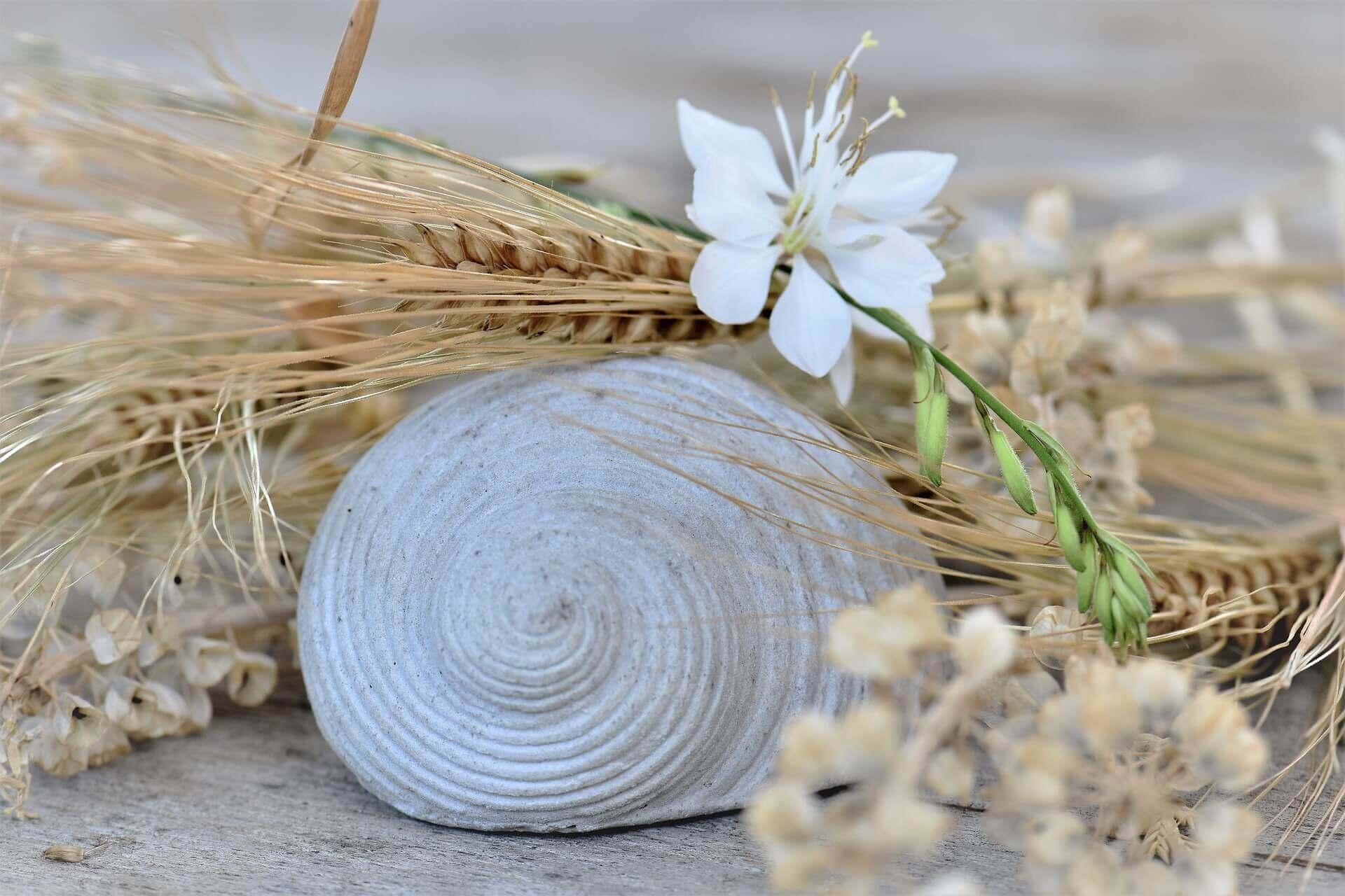 Muschel Deko Blume