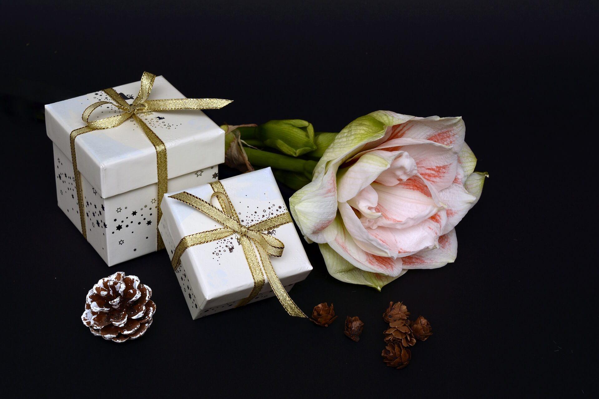 Ritterstern Weihnachtsgeschenk