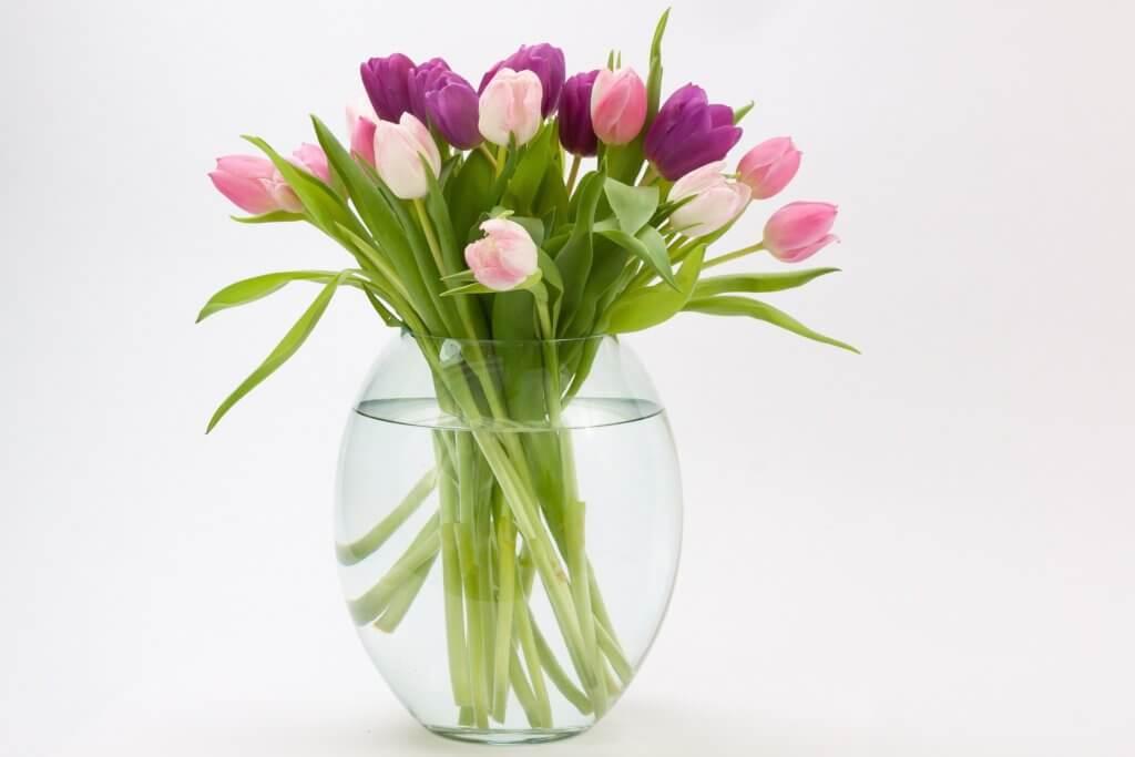 Rosa Tulpen In Vase