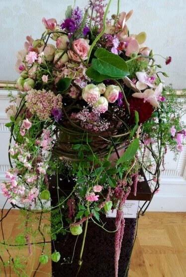 Strauss Englische Rosen