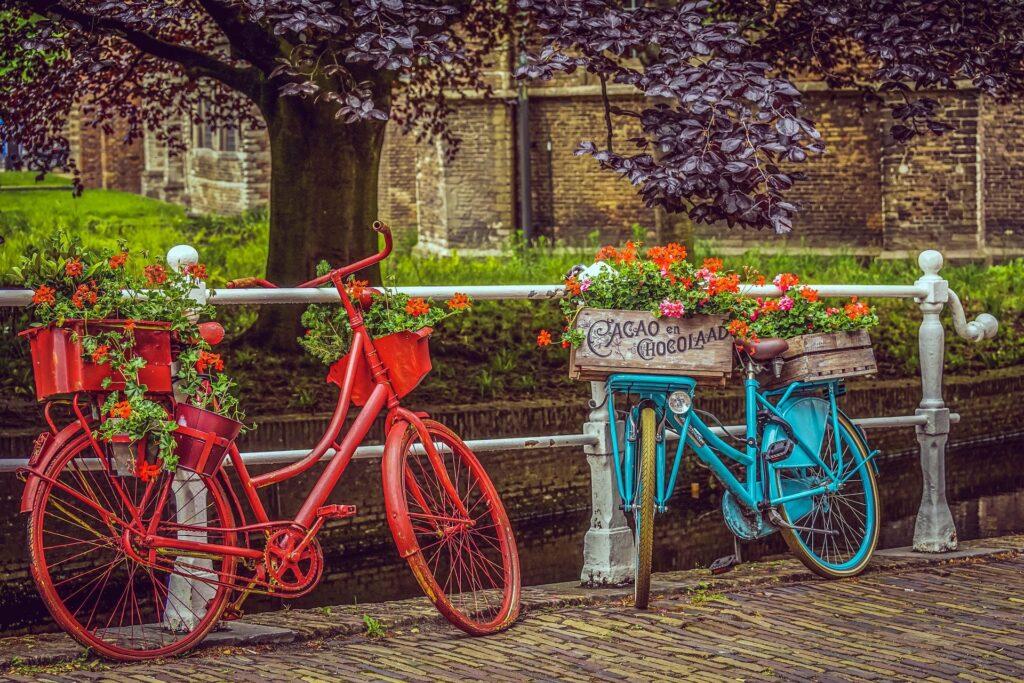 zwei bunte Fahrräder mit Geranien